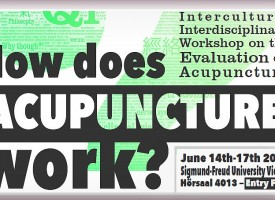 "Workshop: ""How does Acupuncture work?"" 