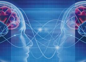 PSY | Der Mensch ist mehr als sein Gehirn – Interview zum Thema Hirnforschung und Psychologie